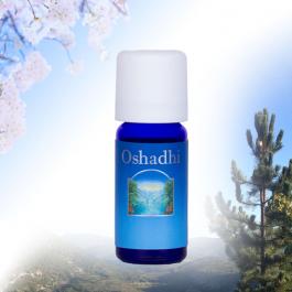 Synergie Gloedrood Oshadhi - blije en lichte sfeermaker - 10ml